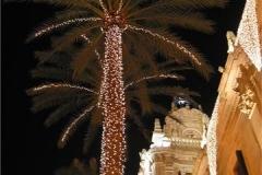 Valencia-Christmas-Palm-Trees-Dodie-Hodgkinson