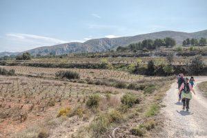 Camino de Santiago walk Etapa 11 Fontanars del Alforin to La Font de Figueras