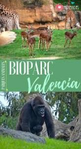 FULLY BOOKED - Valencia Bioparc or city centre day trip @ 08:45 from Interiors, Javea