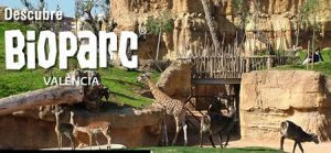 Bioparc Valencia day trip or just the city